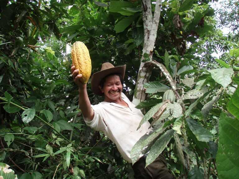 Chocolat Equateur 3