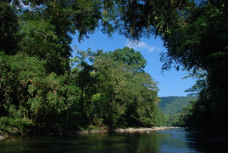 La réserve biologique du Rio Bigal